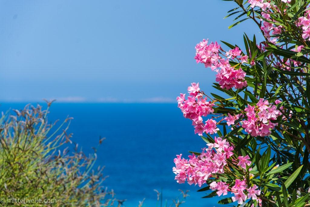 wpid4091-Santa-Teresa-Gallura-Sardinien.jpg