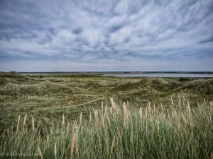 Landschaft in Dänemark